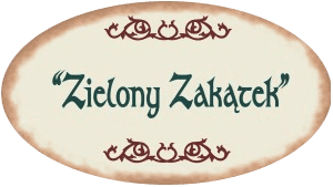 Noclegi ostrołęka Hotel Logo
